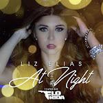 Liz Elias - At Night (feat. Flo Rida) - Single Cover