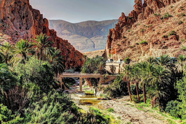 What You Need To Know Before Traveling To Algeria