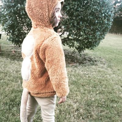 Disfraz Camello Casero