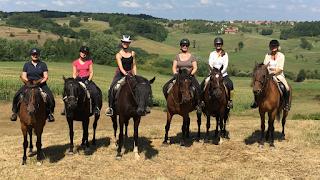 Kroatia, ratsastusmatka, riitta reissaa