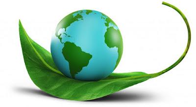 Môi trường xanh tác động tích cực đến chất lượng cuộc sống