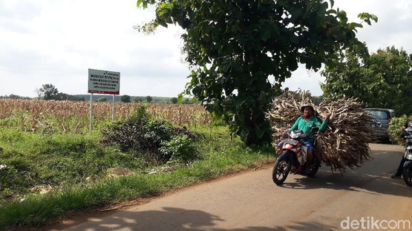 Harga Tanah Sekitar Kampung Miliarder Tuban Jadi di Atas Pasaran