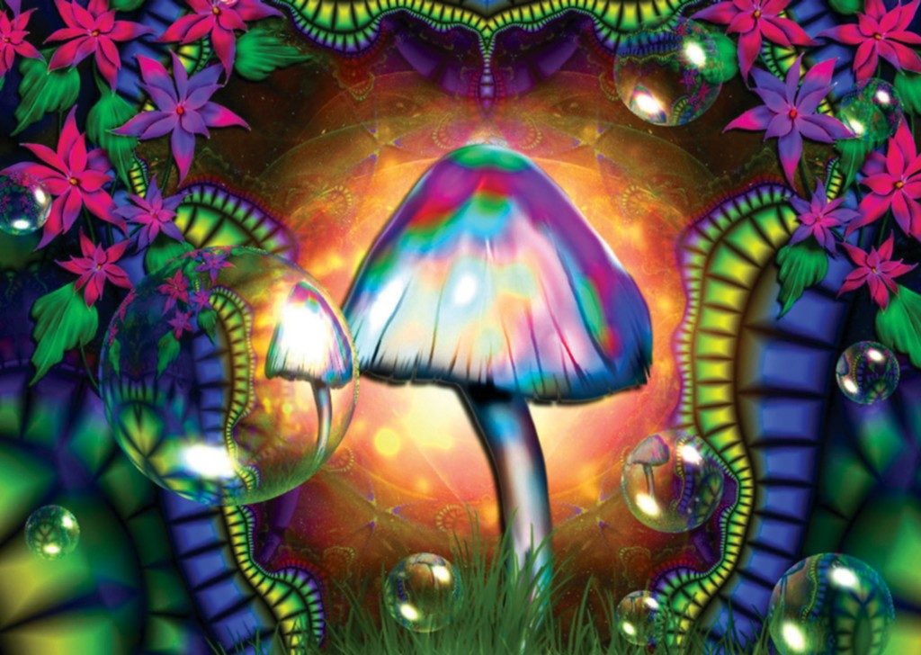 North Park Critters: psychedelic art  North Park Crit...
