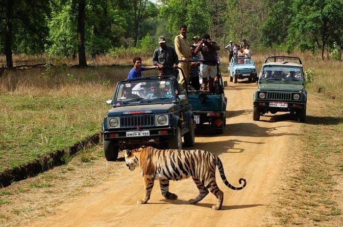 Ranthambore-Netional-Park -A-Tiger-Reserve-Safari-Wildlife-Best-time-to-Visit