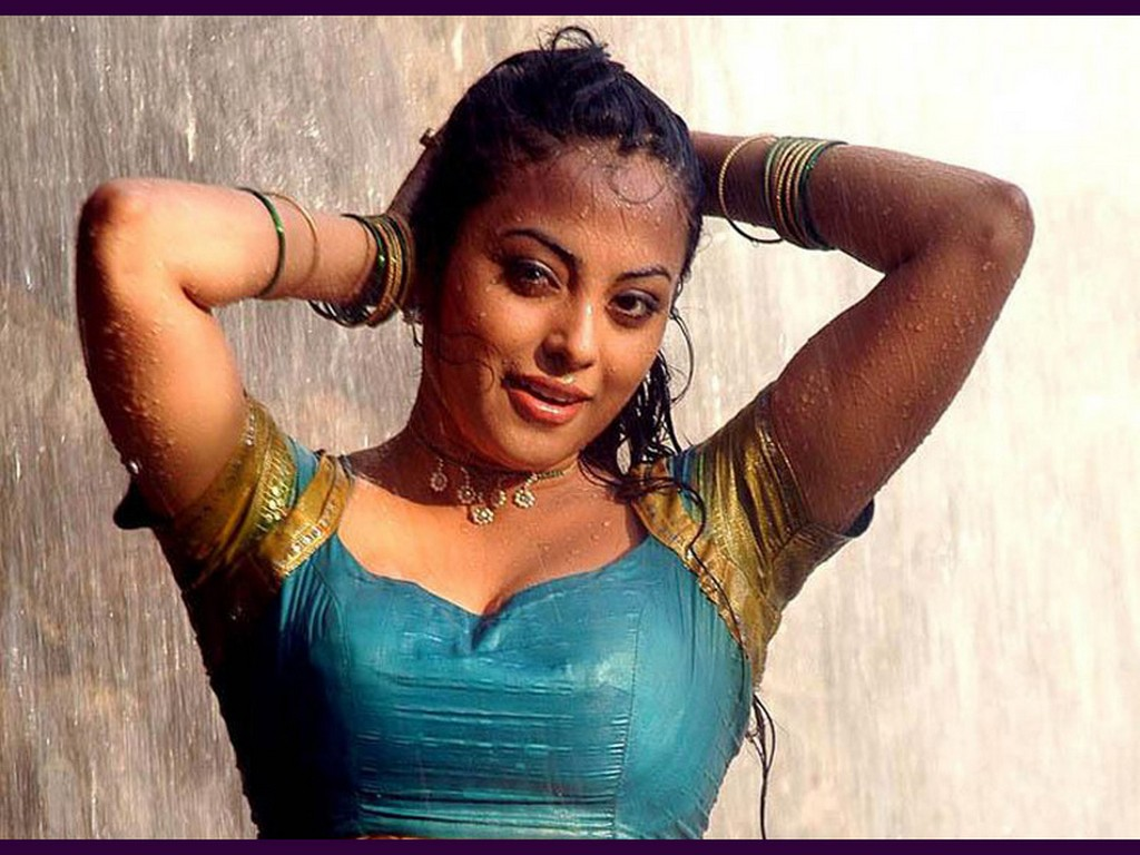 Hot Photos South Indian Actress In Wetinwater-4872