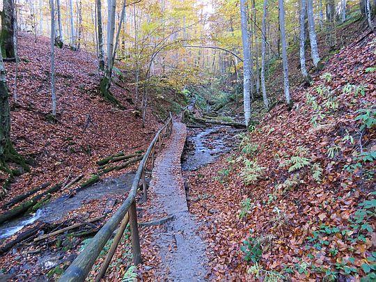 Mostki pod koniec zejścia do Berehów Górnych.