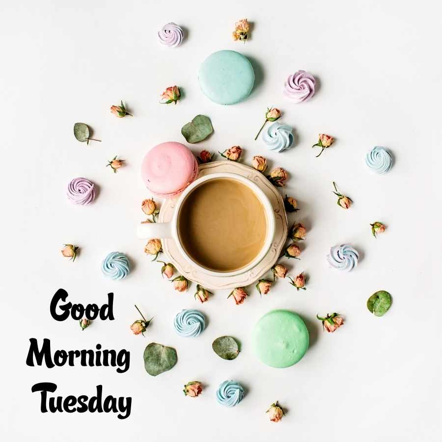 good morning tuesday pictures