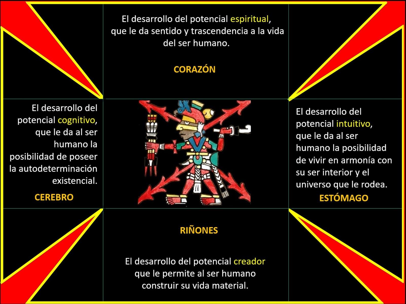 La pirámide del desarrollo. Video