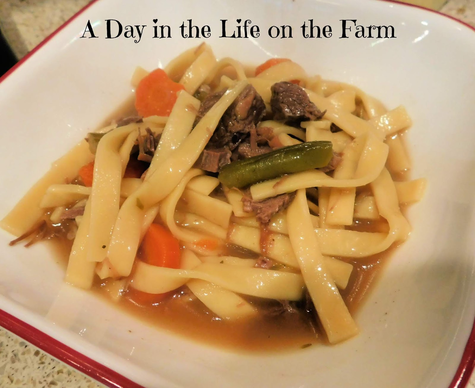 Leftover Beef Noodle Soup