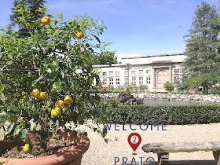 Immagine del giardino della villa con limonaia