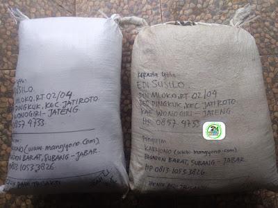 Benih padi yang dibeli   EDI SUSILO Wonogiri, Jateng.   (Setelah packing karung ).