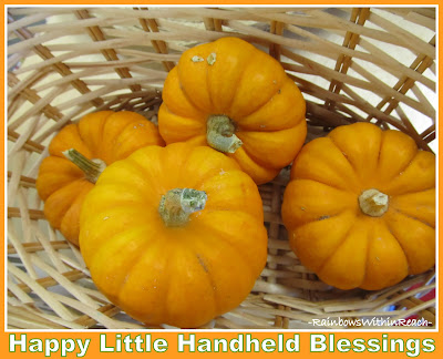 photo of: Mini Pumpkin Gourds for Halloween via RainbowsWithinReach
