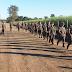 Tiro de Guerra realiza a primeira marcha de 8km