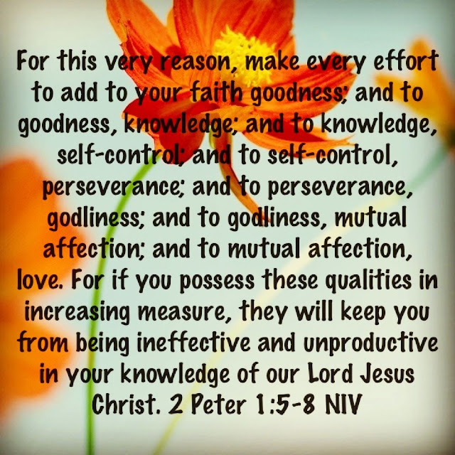 Make every effort to add to your faith goodness; and to goodness, knowledge; and to knowledge, self-control; and to self-control, perseverance; and to perseverance, godliness; and to godliness, brotherly kindness; and to brotherly kindness, love. For if you possess these qualities in increasing measure, they will keep you from being ineffective and unproductive in your knowledge of our Lord Jesus Christ.
