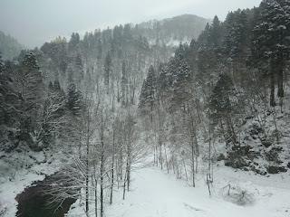 新幹線こまちで盛岡から秋田間の雪景色の車窓