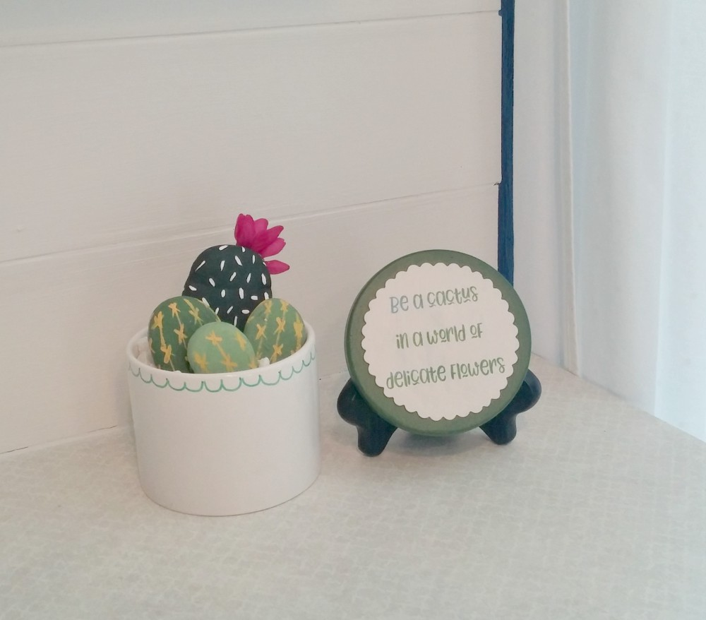 decorative cactus rocks