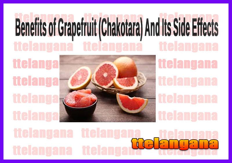 Benefits of Grapefruit (Chakotara) And Its Side Effects