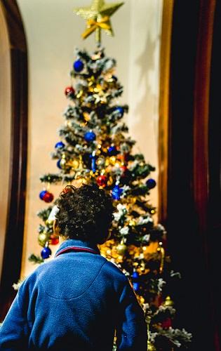 fotos-adornos-navideños