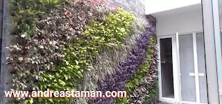 Jasa_tukang_taman_vertikal_garden_bintaro
