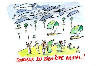 Commande de dessins satiriques sur la SURVACCINATION ANIMALE. ©Guillaume Néel