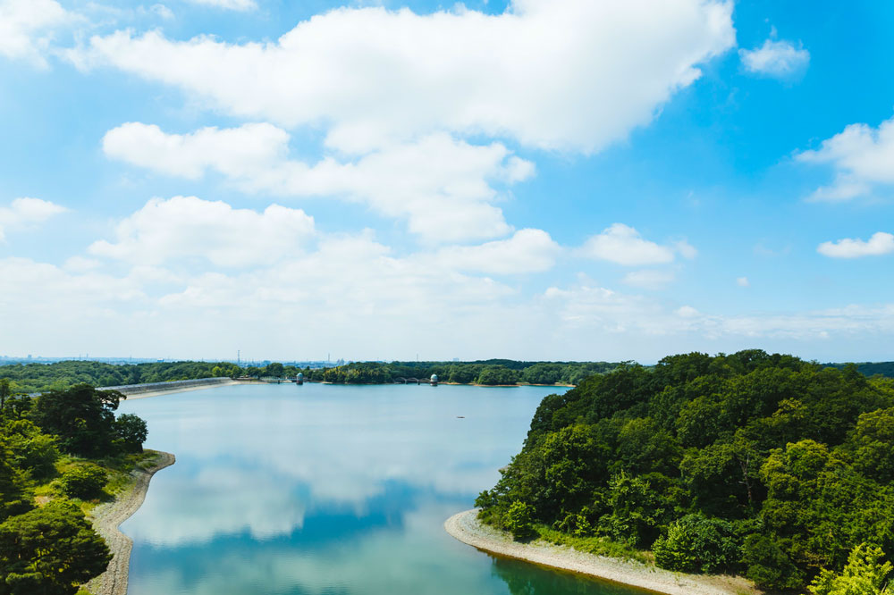 多摩湖こと村山貯水池の写真