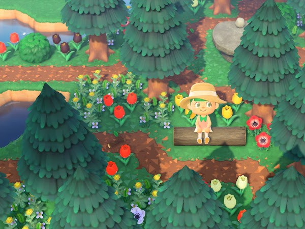 Animal Crossing NH - Peach Pit Dream