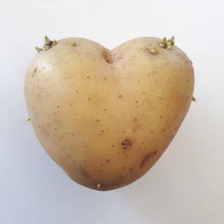 Potatolove