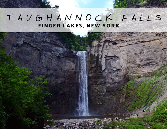 Taughannock Falls State Park in Summer