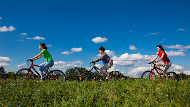 a mother and children cycling through a field