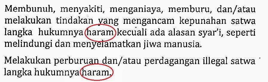 fatwa mui haram