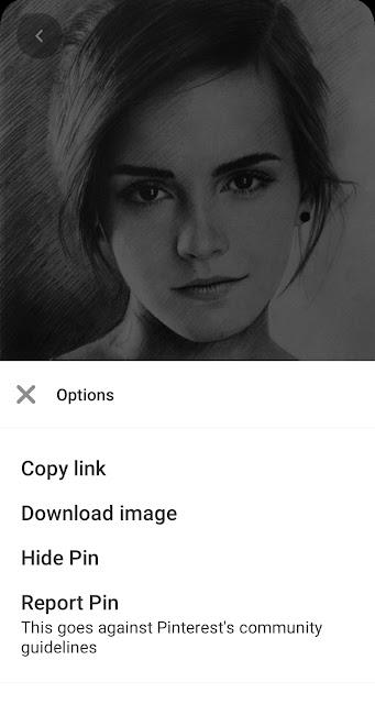 Pinterest से फोटो कैसे डाउनलोड करें