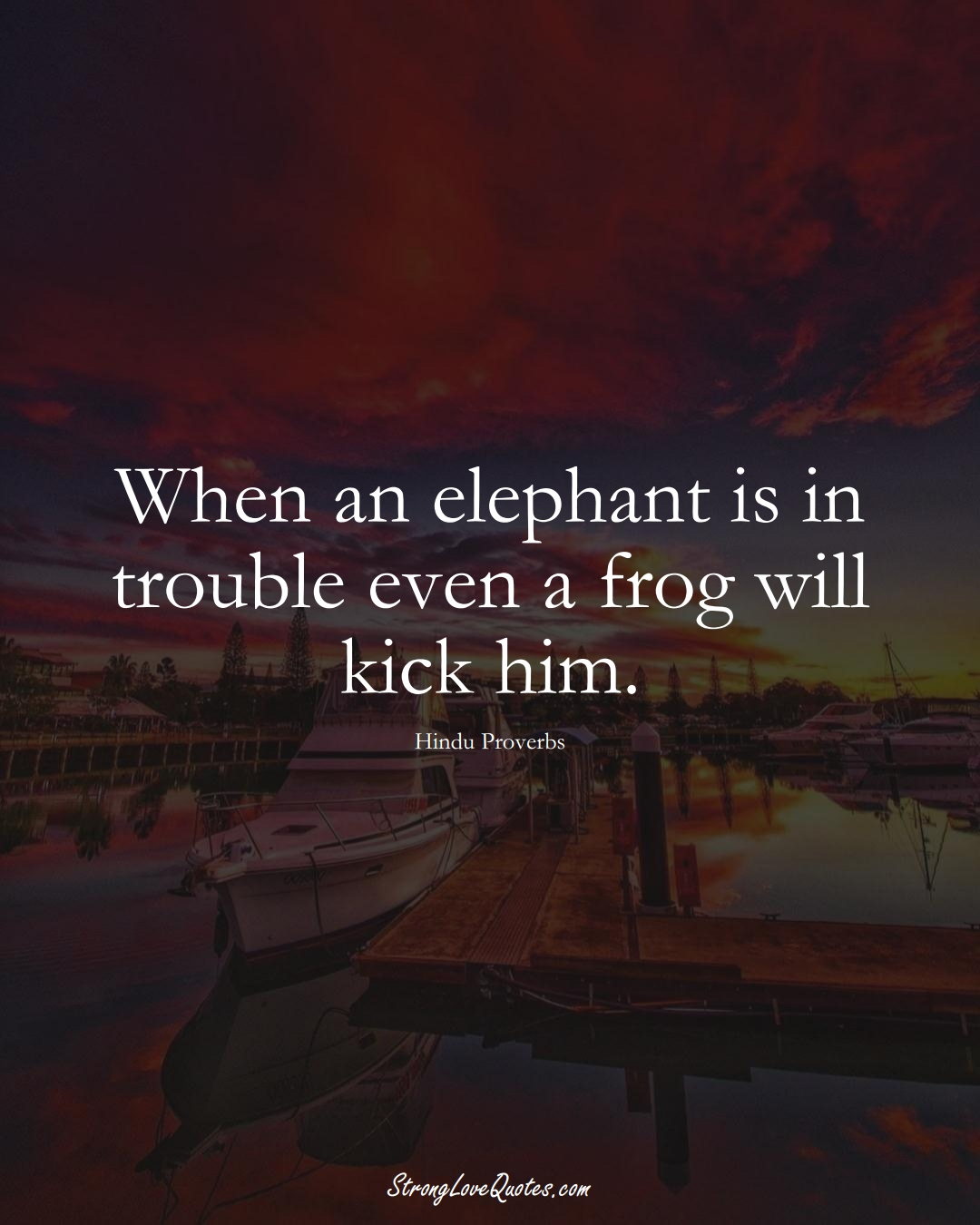 When an elephant is in trouble even a frog will kick him. (Hindu Sayings);  #aVarietyofCulturesSayings