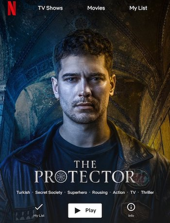 The Protector S02 Complete Hindi Dubbed 480p WEB-DL
