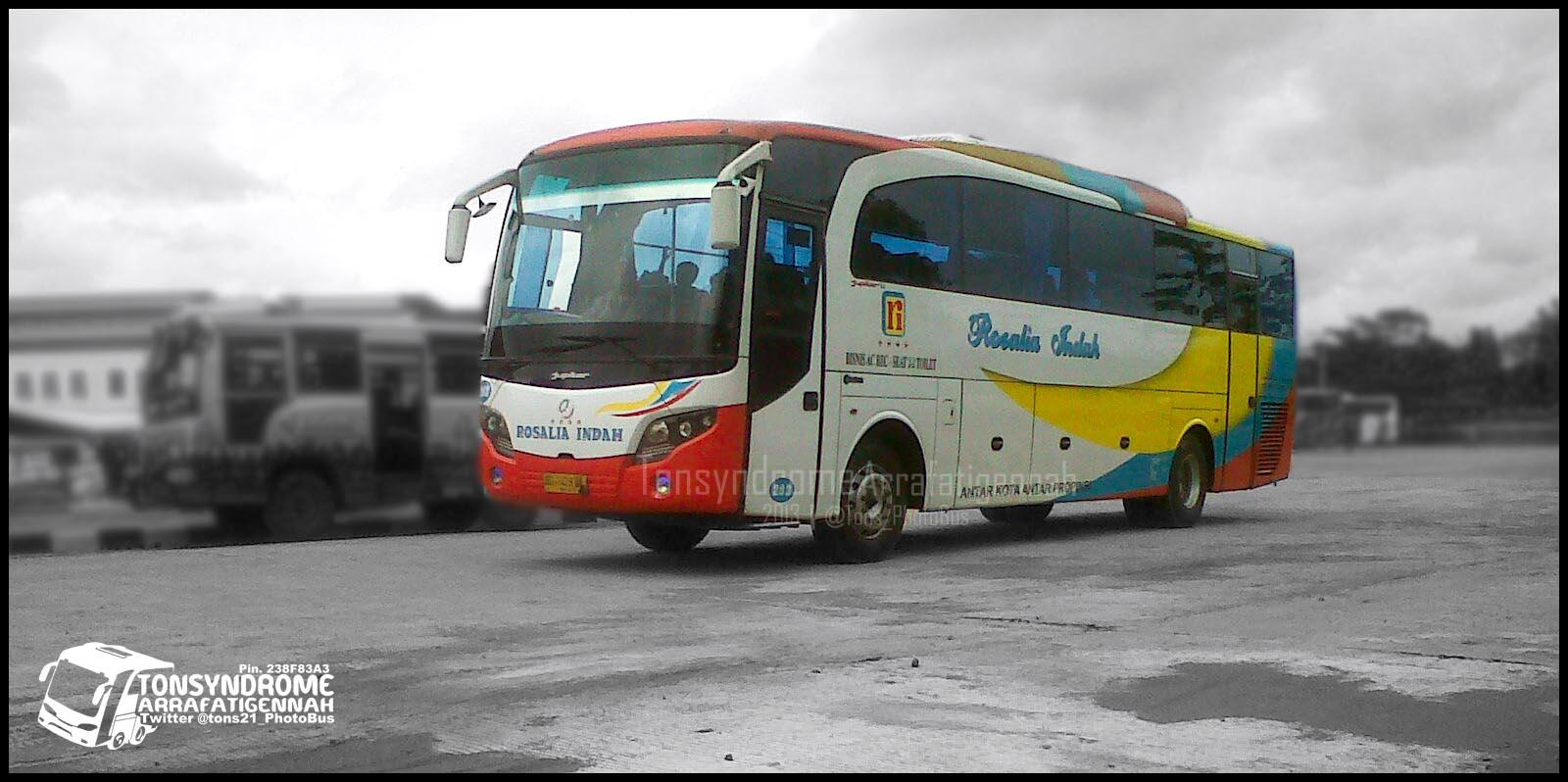 9b11eb59c7e Download foto bus rosalia indah