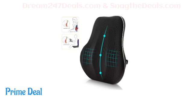 Lumbar support for office chair 50% off