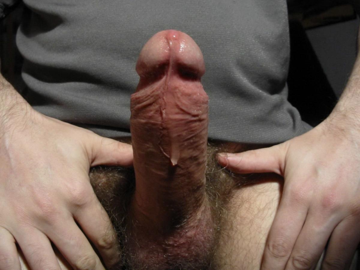 penisi-na-foto-ogromnie-parney