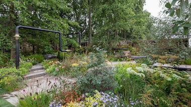 Un refugio verde para las personas y la vida silvestre ubicado en un entorno urbano degradado