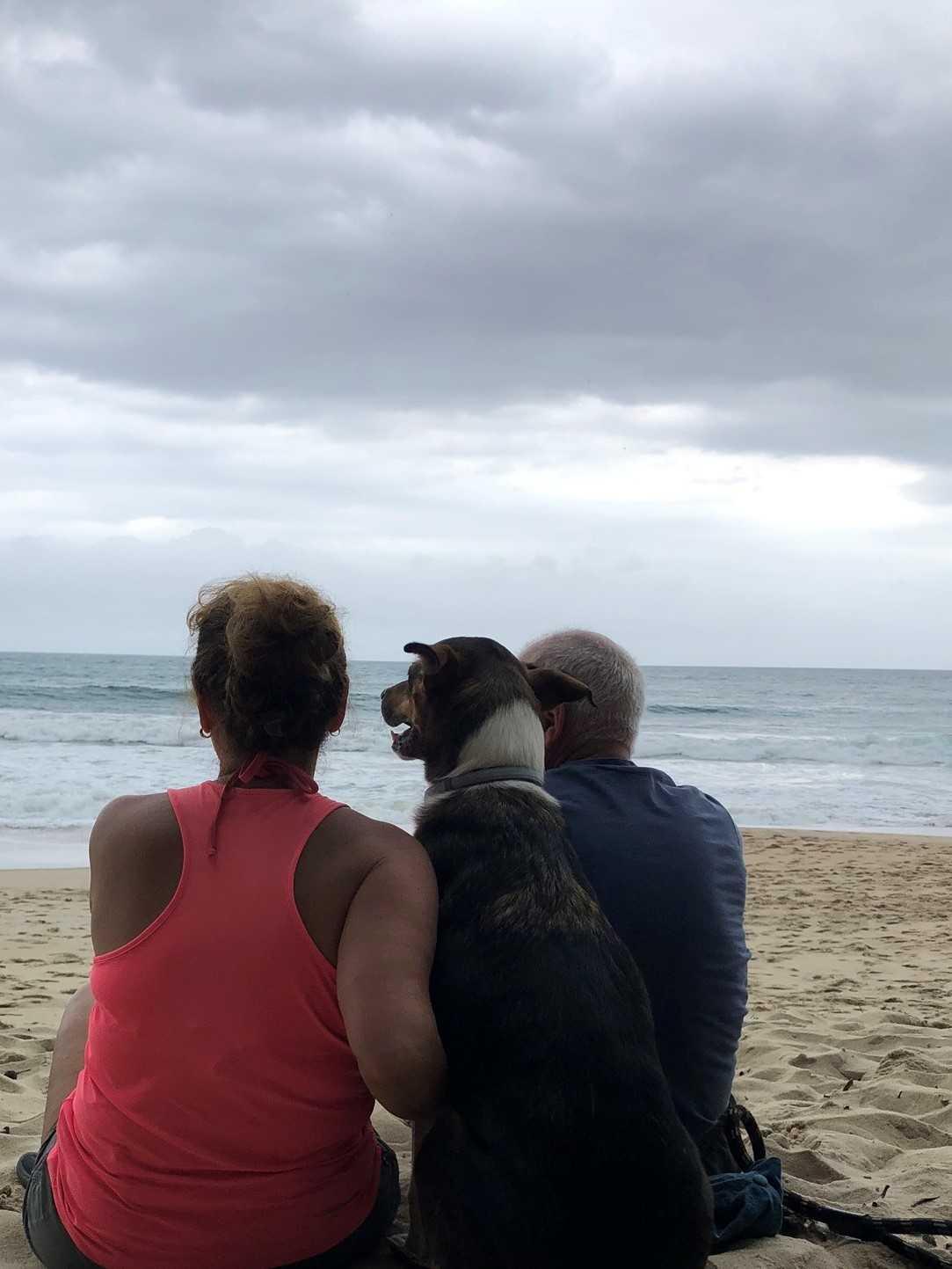 Viagem com cachorro - 3 dias em Ubatuba