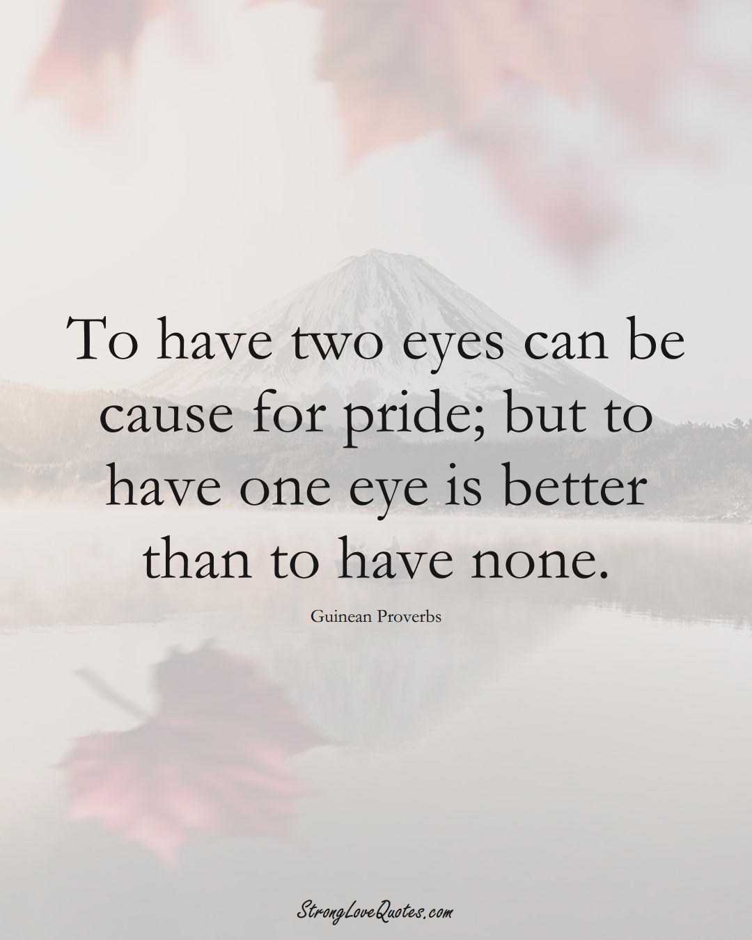 To have two eyes can be cause for pride; but to have one eye is better than to have none. (Guinean Sayings);  #AfricanSayings