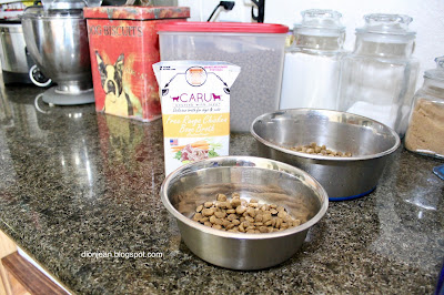 Dog broth with dog food