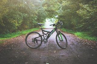 jenis sepeda gunung dan harganya