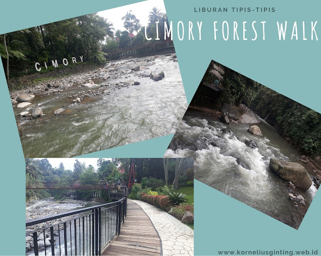 Cimory Forest Walk