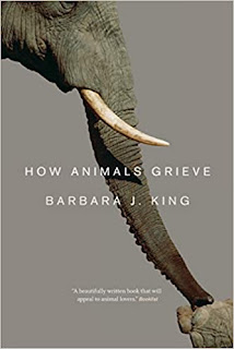 Cover of the book How Animals Grieve by Barbara J. King