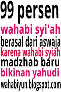 Syaikhul islam wahabi ibnu taimiyah akui kebenaran aqidah aswaja