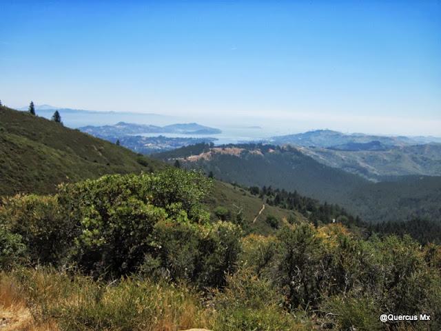 Vista parcial de la Bahía de San Francisco desde Mount Tamalpais