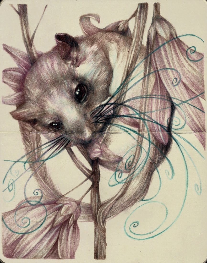 12-Marco-Mazzoni-Surreal-Animal-Drawings-www-designstack-co