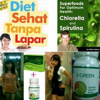 CMP - Chlorophyll Mint Powder