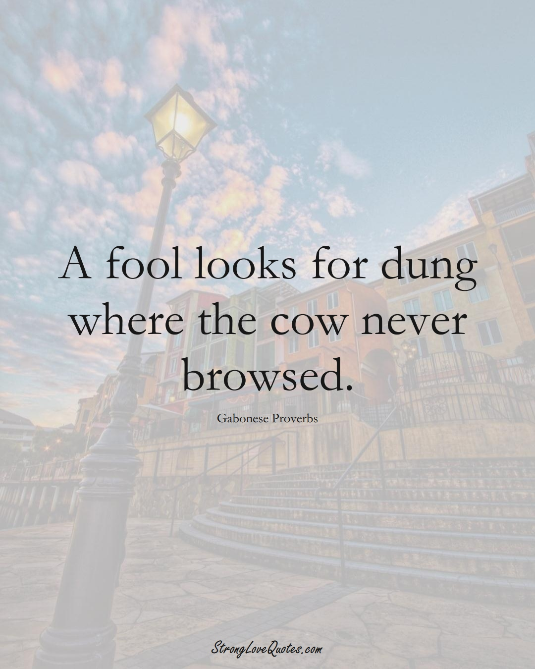 A fool looks for dung where the cow never browsed. (Gabonese Sayings);  #AfricanSayings