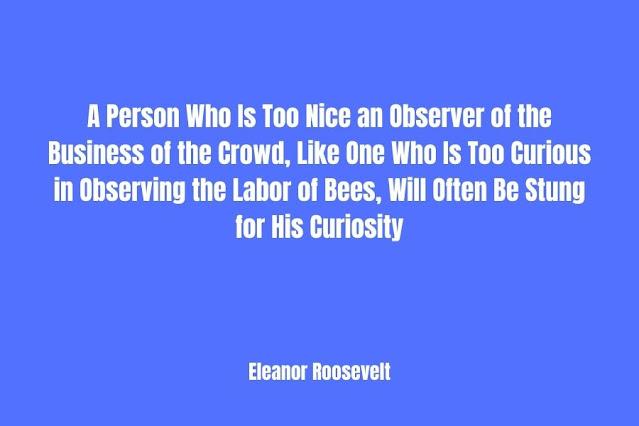Great Curiosity Quotes