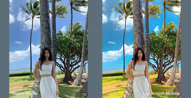 Cara Edit Foto di Lightroom Android